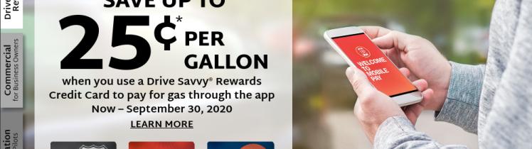 Drive Savvy Card Logo
