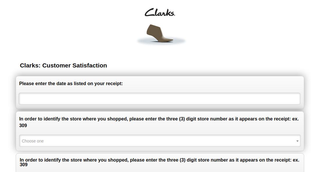 Clarks Shoes Survey